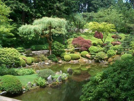 japán kert 9