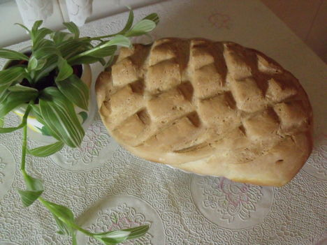 mindennapi kenyerünk...