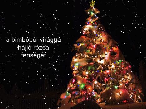 Mit adnék karácsonyra Neked. 11