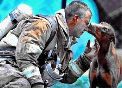 Hálapuszi az életmentő tűzoltónak