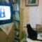 tévézek