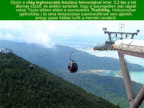 Egyoszlopos híd Malajziában  3