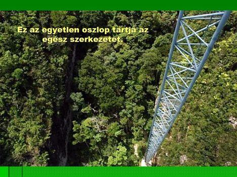 Egyoszlopos híd Malajziában  5