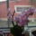 orchideáim