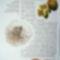Kalóriaszegény ételek (1)