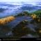Minkebe Forest, Gabon, 2000