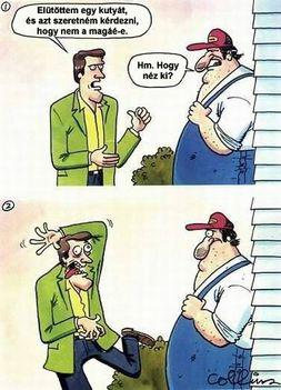 Kutyaütő