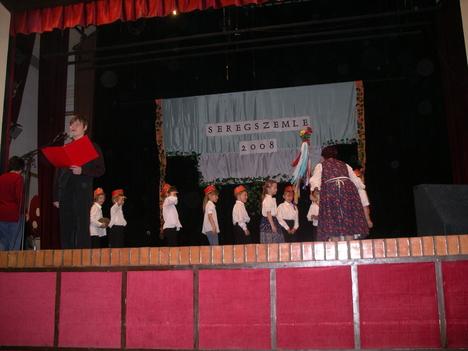 Seregszemle 2008