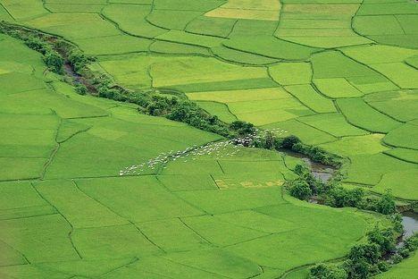 Mai Chau - Vietnám 15