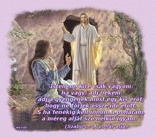 bibliai idézetek húsvétra Biblia: képes idézetek 1 (kép)