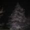 Téli éjszakai hóesés.