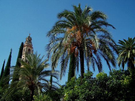Spanyolország 2007 309