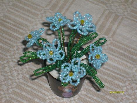egyszerű kis virág