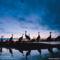 Nighttime Hideaway, Sandhill Cranes, Platte River, Nebraska