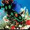 Nudibranch, Western Pacific Ocean, 1996