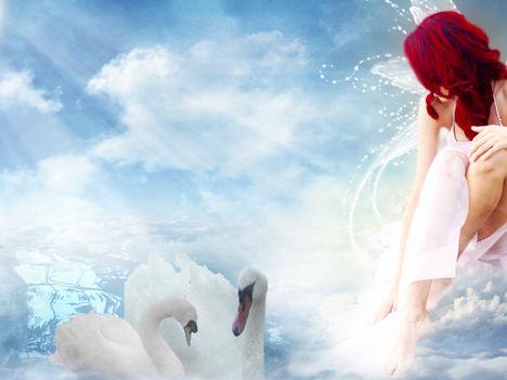 Swan-lake...
