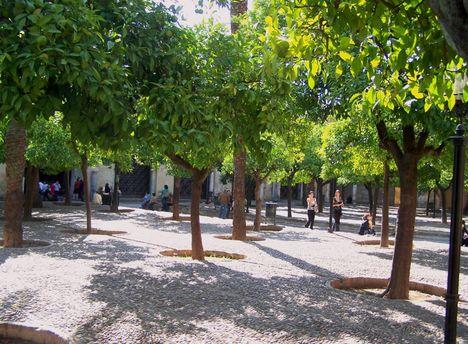 Spanyolország 2007 255