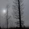 Köd 2