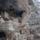 Barlanglako_641684_60278_t