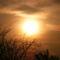 Tavaszi naplemente Undon 1