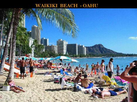 Hawai 20