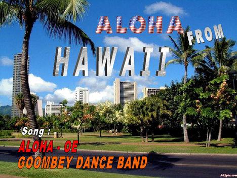 Hawai 33