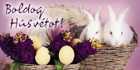 Áldott, Boldog Húsvéti Ünnepeket 1