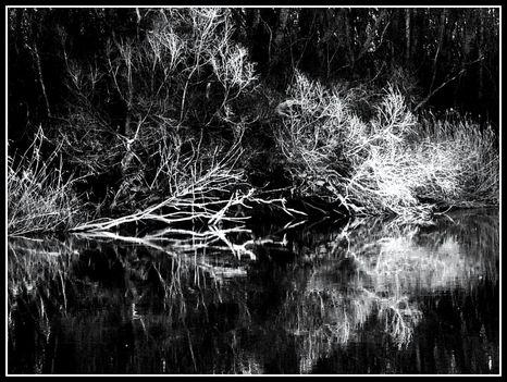 Árnyjáték  vízen