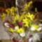 Húsvéti kosárkák, asztali és ajtó díszek. 5