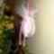 Rózsaszín is van..:))..a kicsi fiúknak..