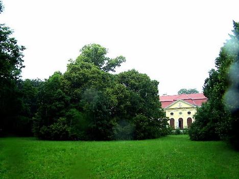 Széchényi -hárs007