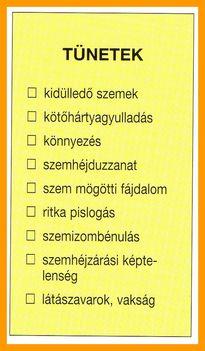 ENDOKRIN BETEGSÉGEK. 3