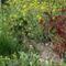 Tavasz a kiskertekben 6