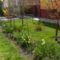 Tavasz a kiskertekben 8