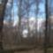 Zala_ 066_A vétyemi  ősbükkös