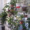 vegyes virágok