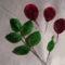 Rózsa részei