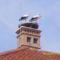 gólyák a Gólya vendéglőn