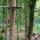 Kalandpark_677432_24333_t