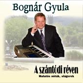 Bognár Gyula