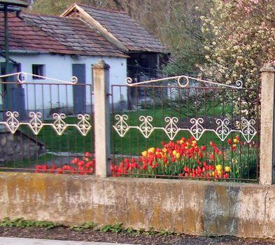 Virágok az utcán és a kiskertekben