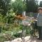 Erzsike a postásunk virágos udvarán