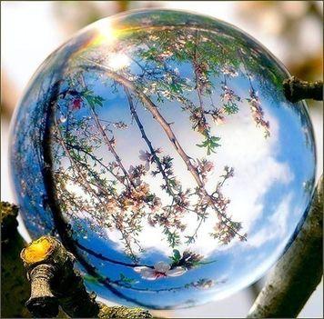 a Föld napja....