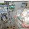 lélegeztető gép -inkubátor