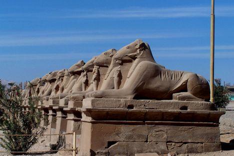 Egyiptom 2008 378