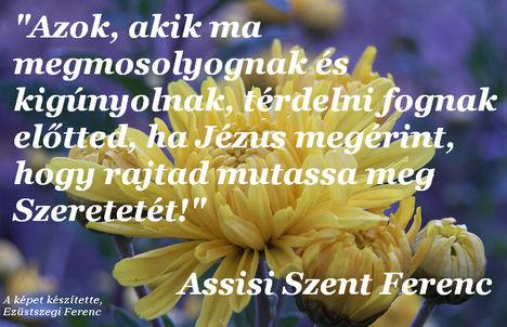 Assisi Szent Ferenc - idézet (01)