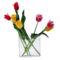 Tulipános háttérkép 25