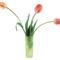 Tulipános háttérkép 26