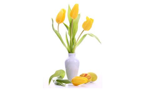 Tulipános háttérkép 2