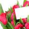 Tulipános háttérkép 3